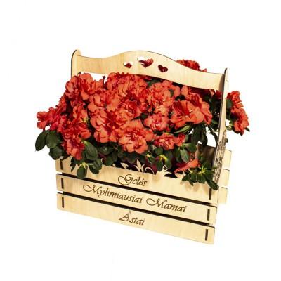 """Gėlių krepšelis """"Gėlės Mylimiausiai Mamai +..."""